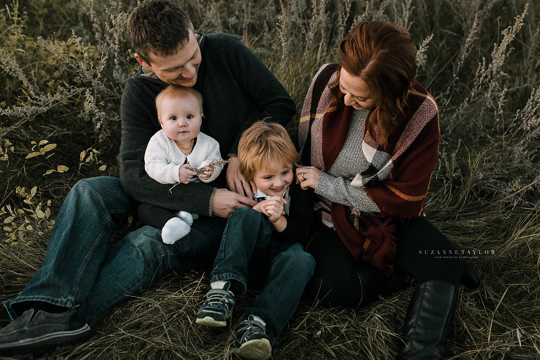 Red deer portrait session by Suzanne Taylor Photography